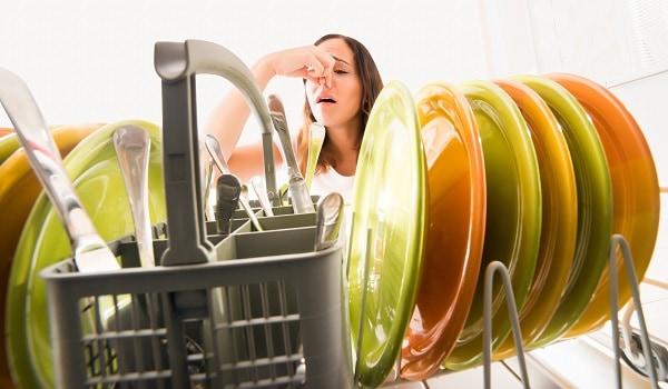 thermador dishwasher smells bad